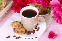 cup of coffee, cookies and flowers on table in cafe