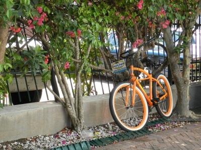 bike ride via flickr