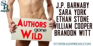 AuthorsGoneWild Banner