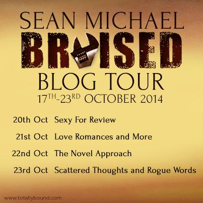 Bruised_SeanMichael_BlogTour_BlogDates_final