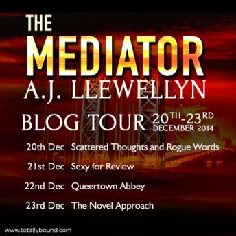 AJLlewellyn_TheMediator_BlogTour_BlogDates_final