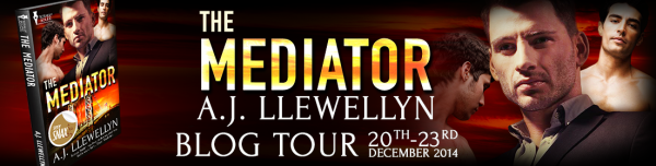 AJLlewellyn_TheMediator_BlogTour_WebBanner_final